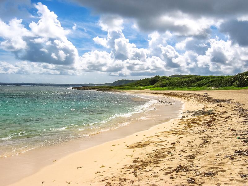 CoffeeMeetsBeach - Best Beaches in Guadeloupe Anse du Souffleur