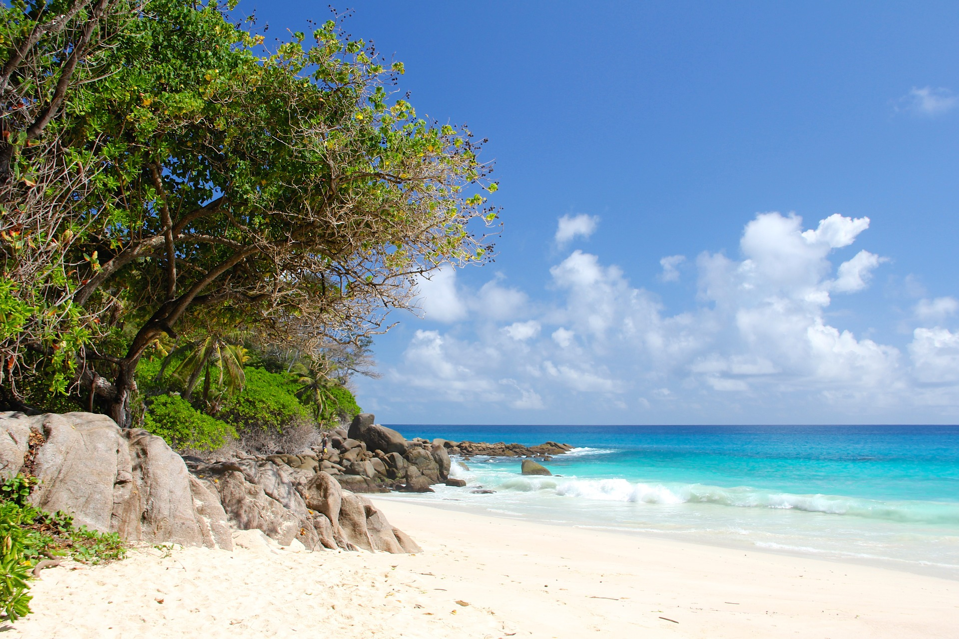 best beaches in seychelles Coffee Meets Beach