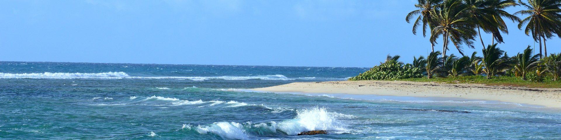 CoffeeMeetsBeach - Best Beaches in Guadeloupe